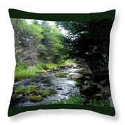 Hidden Brook Throw Pillow