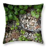 Hidden Bucket Of Rocks Throw Pillow