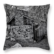 Hidden Cabin Throw Pillow