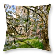 Hidden Church 1 Throw Pillow