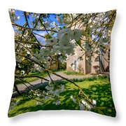 Hidden Church 2 Throw Pillow