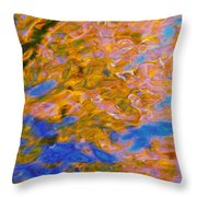 Hidden Dimensions Throw Pillow