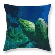 Hidden Eel Throw Pillow