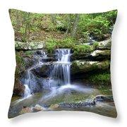 Hidden Falls 1 Throw Pillow by Marty Koch