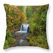 Hidden Falls In Autumn Throw Pillow