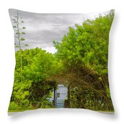 Hidden Gate II Throw Pillow