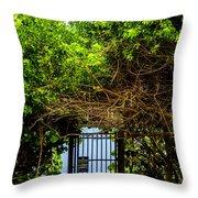 Hidden Gate Throw Pillow