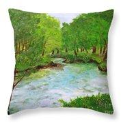 Hidden Gem Of Blackley Forest In Manchester Throw Pillow