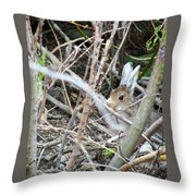 Hidden Hare Throw Pillow
