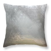 Hidden Harley Throw Pillow