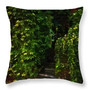 Hidden Hermitage Throw Pillow
