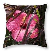 Hidden Hibiscus  Throw Pillow