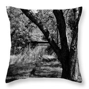 Hidden History Black And White Throw Pillow