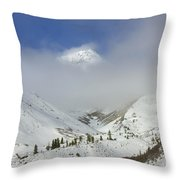 Hidden In Fog Throw Pillow