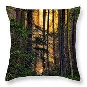 Hidden In The Forest Throw Pillow