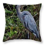 Hidden In The Reeds Throw Pillow