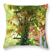 Hidden Lamp Throw Pillow