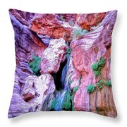 Hidden Oasis Throw Pillow