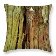 Hidden On The Tree Throw Pillow