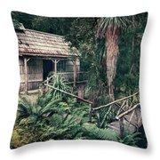Hidden Origin Throw Pillow
