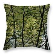 Hidden Pond Natural Fence Throw Pillow