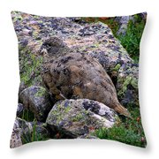 Hidden Ptarmigan Throw Pillow