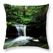 Hidden Rainforest - Painterly Throw Pillow