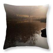 Hidden Reflections Throw Pillow
