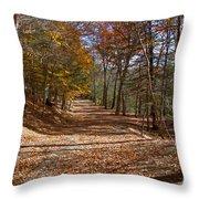 Hidden Road Throw Pillow