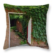 Hidden Sanctuary Throw Pillow