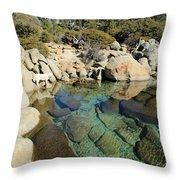 Hidden Shores Throw Pillow