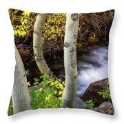 Hidden Stream Throw Pillow