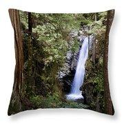 Hidden Within A Forest Throw Pillow