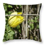 Hidden Yellow Tulip 02 Throw Pillow