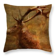 Hide And Seek 2015 Throw Pillow