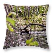 Hide And Seek Ducks Throw Pillow