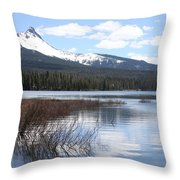 Hide Out Throw Pillow
