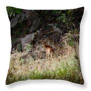 Hiding Behind A Twig Throw Pillow
