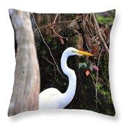 Hiding Egret Throw Pillow