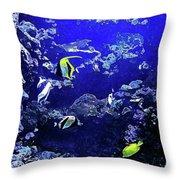 Hiding Fish Throw Pillow