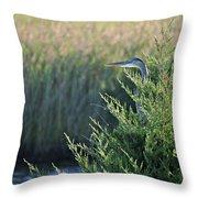 Hiding Heron Throw Pillow