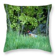 Hiding In The Grass. Pheasant Throw Pillow
