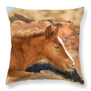 Hiding In The Rocks Throw Pillow