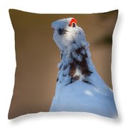 Hiding In The Shadows Throw Pillow