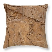 Hieroglyphs On Ancient Carving Throw Pillow by Jane Rix