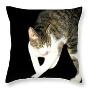 Higgins Does Dance Moves Throw Pillow
