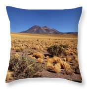 High Altitude Puna Grasslands And Miniques Volcano Chile Throw Pillow