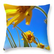 High And Windy  Throw Pillow