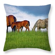 High Browsers Throw Pillow