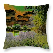 High Contrast River Sunset Throw Pillow
